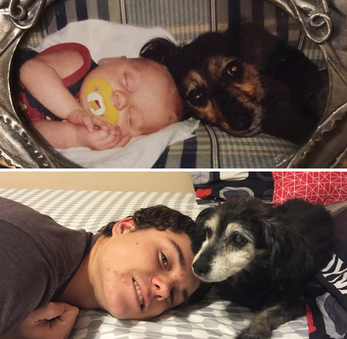 30 Heart-Warming Photos Of Dogs Growing Up Together With Their Owners - 15 Years Later Still Best Friends