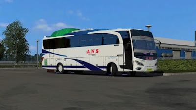 ANS jb v3