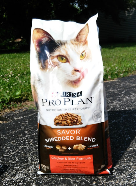 Cat Food Reviews: Purina® Pro Plan® Savor Shredded Blend