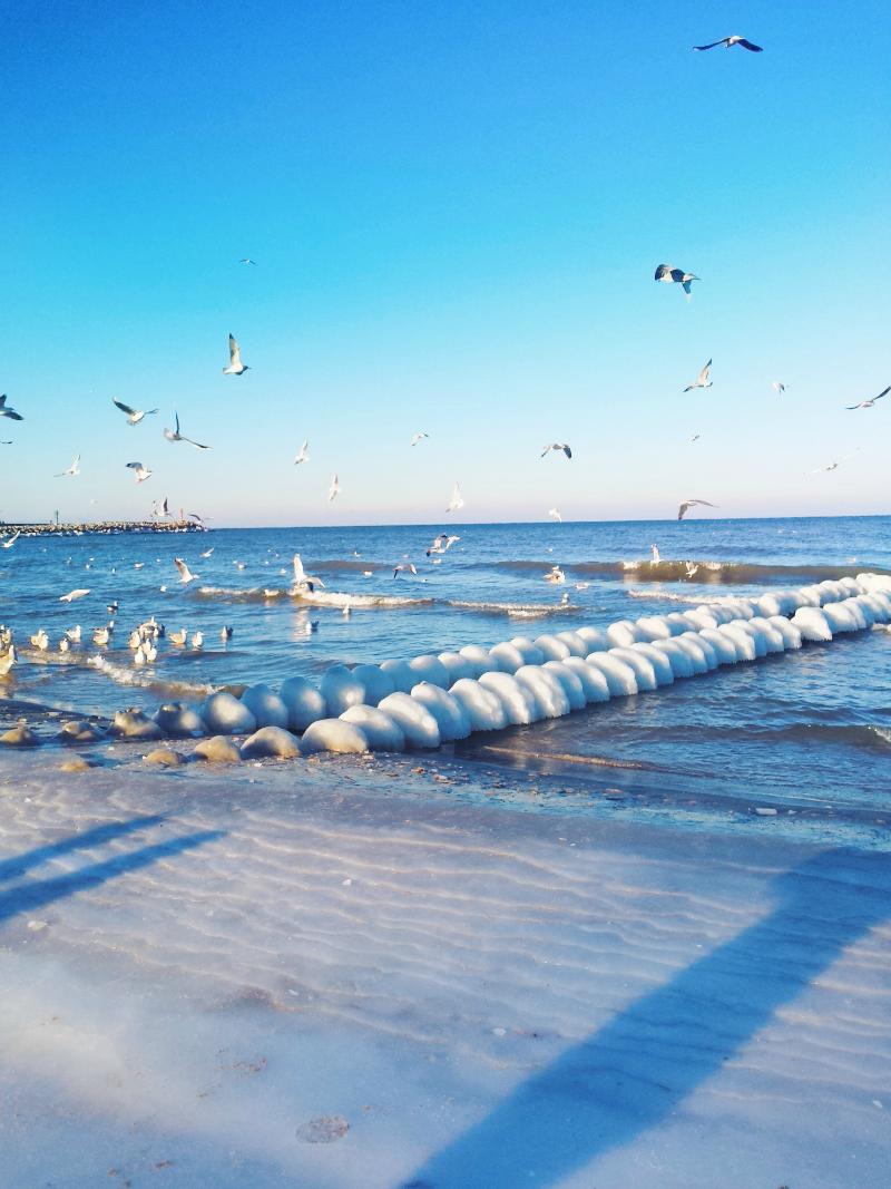 morze_zimą_ustka_bałtyk_mewy