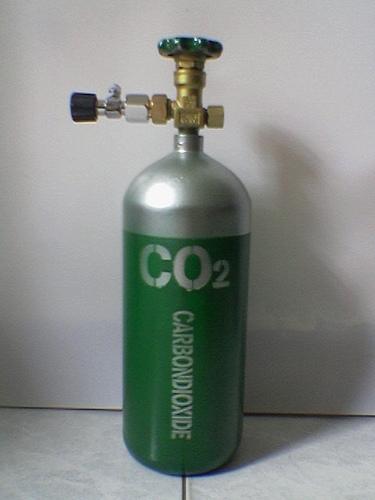 Hệ thống CO2 hoàn chỉnh cho bể thủy sinh gồm những gì?