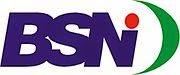 Pengumuman CPNS Badan Standardisasi Nasional  Pengumuman CPNS BSN
