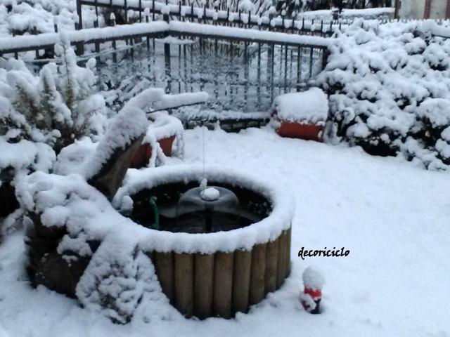 Decoriciclo il mini pond e l 39 inverno for Pesci rossi laghetto