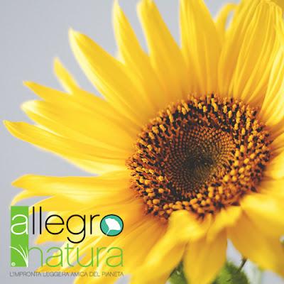 Buon Ferragosto da Allegro Natura