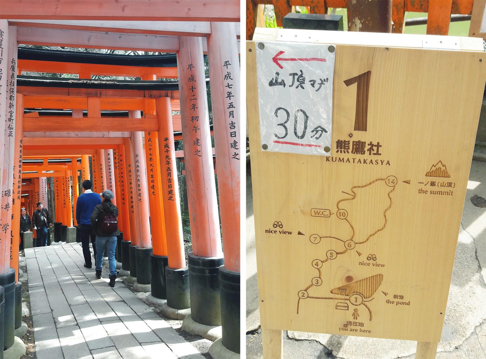 Climb Fushimi Inari Kyoto | www.bigdreamerblog.com