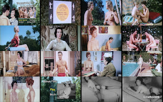 The Nudist Story / For Members Only / Pussycats Paradise. 1960. DVD.