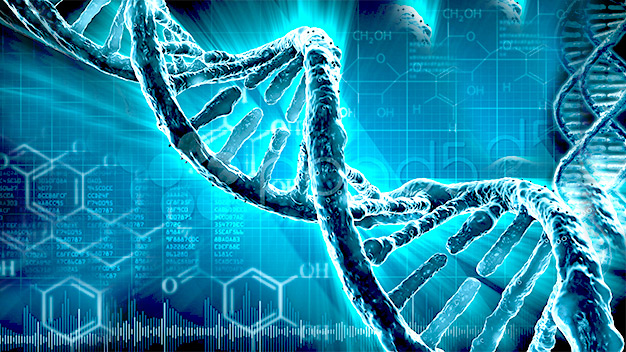Can Our Genes Aid In Weight Loss?