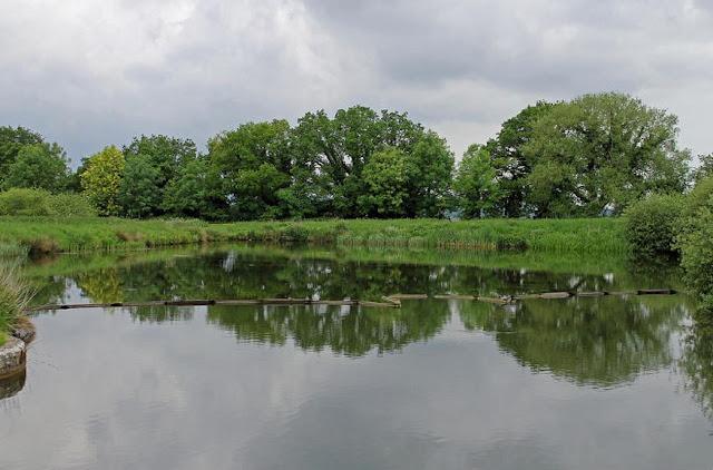 Buy original Wall Art of Caen Hill Locks Side Ponds