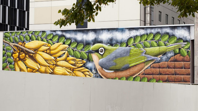 Street art in Christchurch New Zealand: colorful bird