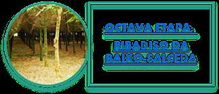 OCTAVA ETAPA: RIBADISO DA BAIXO-SALCEDA