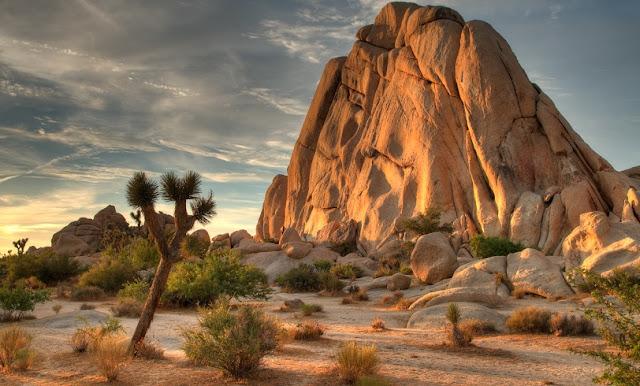 Parque Nacional de Joshua Tree na Califórnia