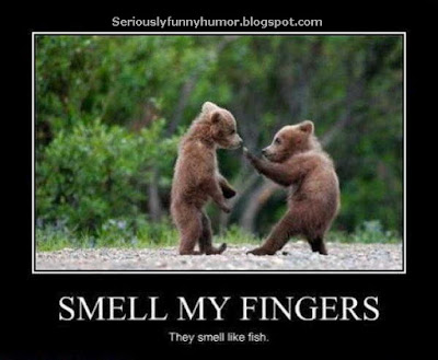 One bear says to another: Smell my fingers, they smell like fish! ahahahaha