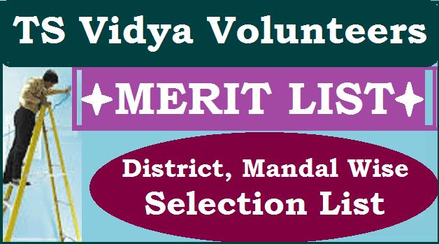 TS Jobs, TS Recruitment, TS Schools, TS State, TS VVs Recruitment, Vidya Volunteers, Merit List, Selection List, Results