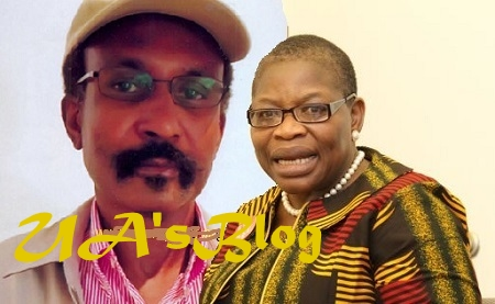 LEAKED: Obasanjo's Third Force Settles For Retired Army Chief, Col. Umar, Ezekwesili's 2019 Joint Presidential Ticket