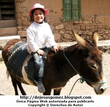 Foto de niña montana en un burro por Jesus Gómez