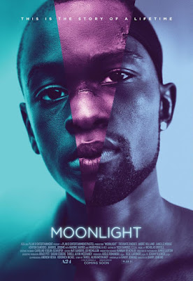 Moonlight 2016 DVD Custom NTSC Sub SCR
