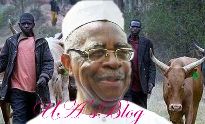 Amnesty Int'l report credible, too many killings in the land – TY Danjuma