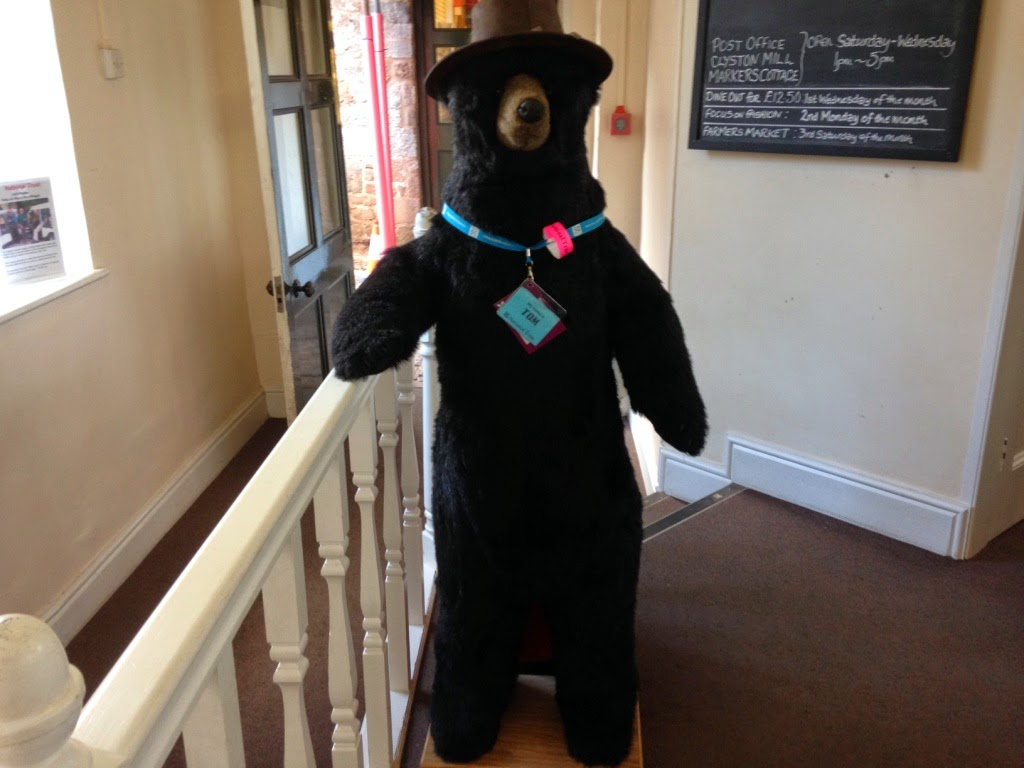Tom the Killerton bear