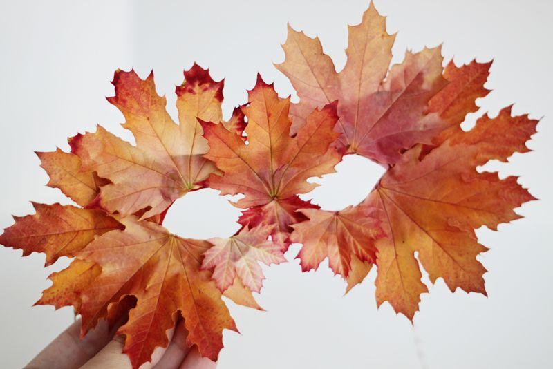 diy leaf mask