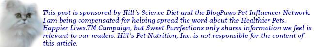 Disclosure - Sponsored post by Hill's® Science Diet® and BlogPaws Pet Influencer Network