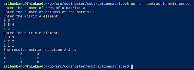Output of Program subtraction two matrices golang