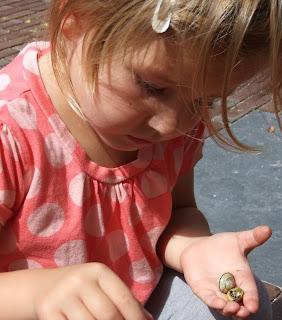 Kinder sind von Natur aus neugierig und lernen am Besten, wenn sie frei ihren Interessen nachgehen können, ohne Vorgaben von außen.