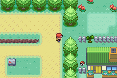 pokemon zaru screenshot 3