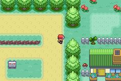 pokemon zaru screenshot 3