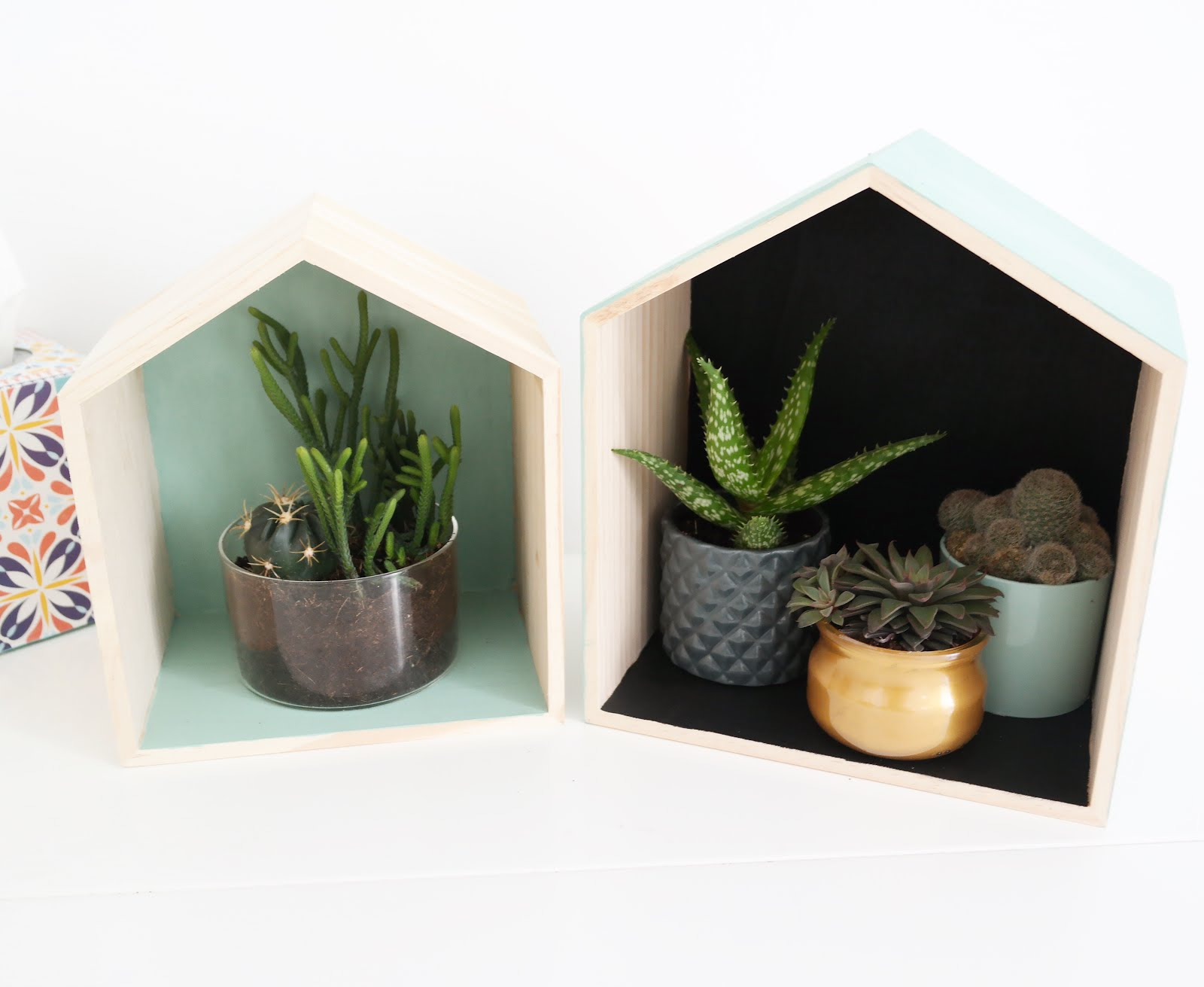 diy les maisons des cactus shylylovely. Black Bedroom Furniture Sets. Home Design Ideas