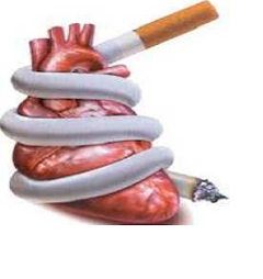 Smoking Potentially Heart Disease