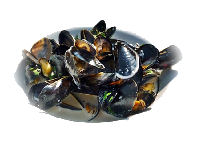 mussels-for-lunch