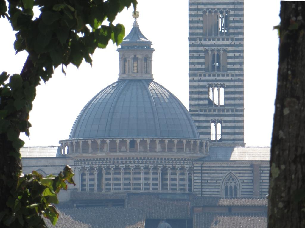 Der Schwanbürger: Endlich haben auch wir Siena (nicht) gesehen!