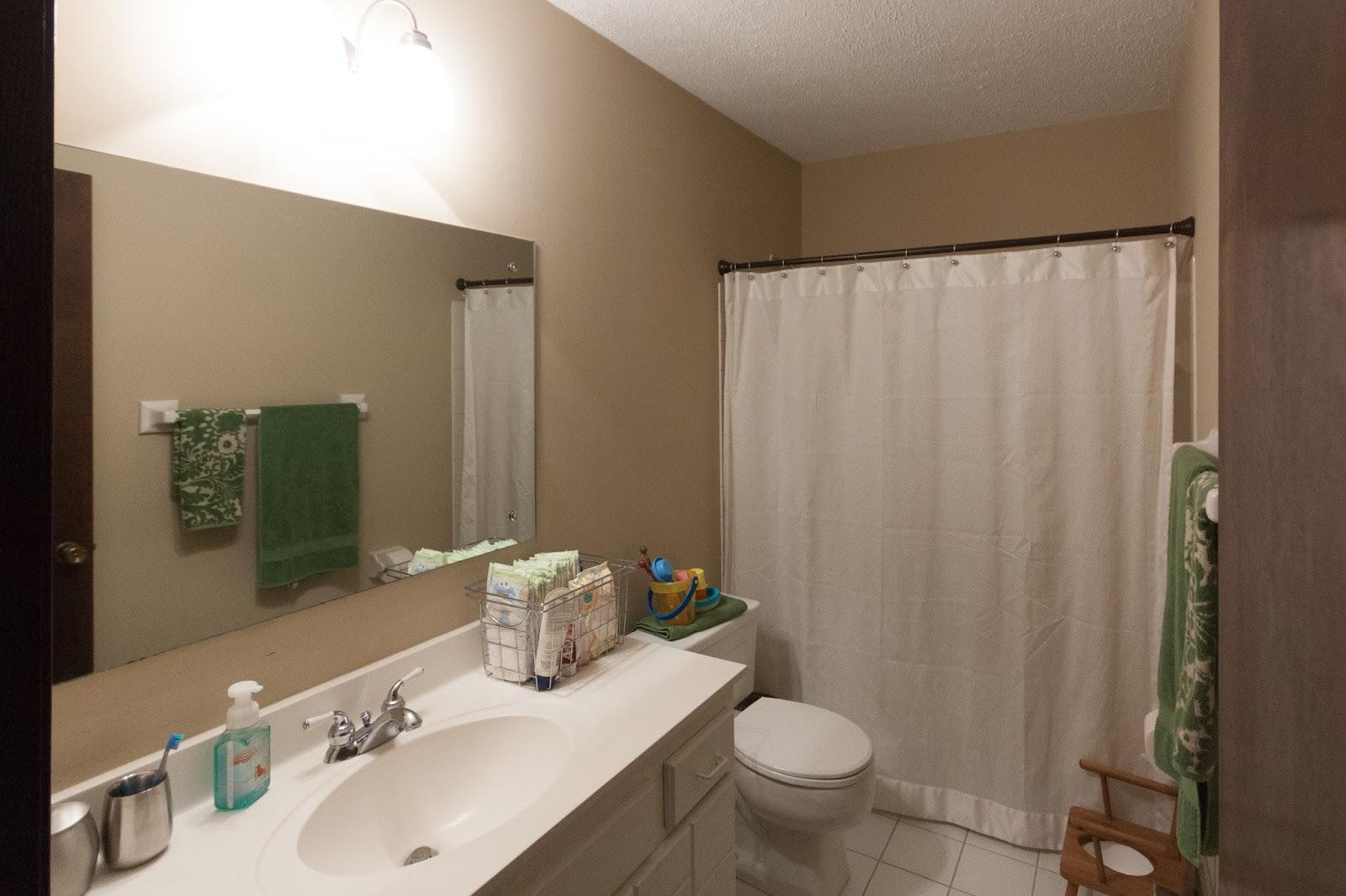 Russet Street Reno: Our Bathroom