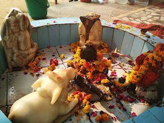 नॉएडा सेक्टर-२२ शिव दुर्गा धाम मंदिर में रामायण पाठ के कार्यक्रम का आयोजन हुआ - ४