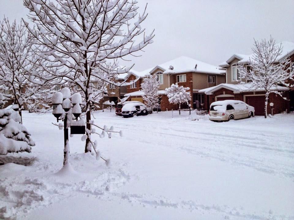 Post fotográfico: Vida abaixo de 0℃