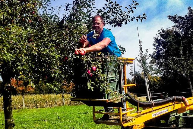 Demeter-Bauer Jakob Kaufmann: «Ich verstehe Pflanzenschutz als Pflanzenstärkung»