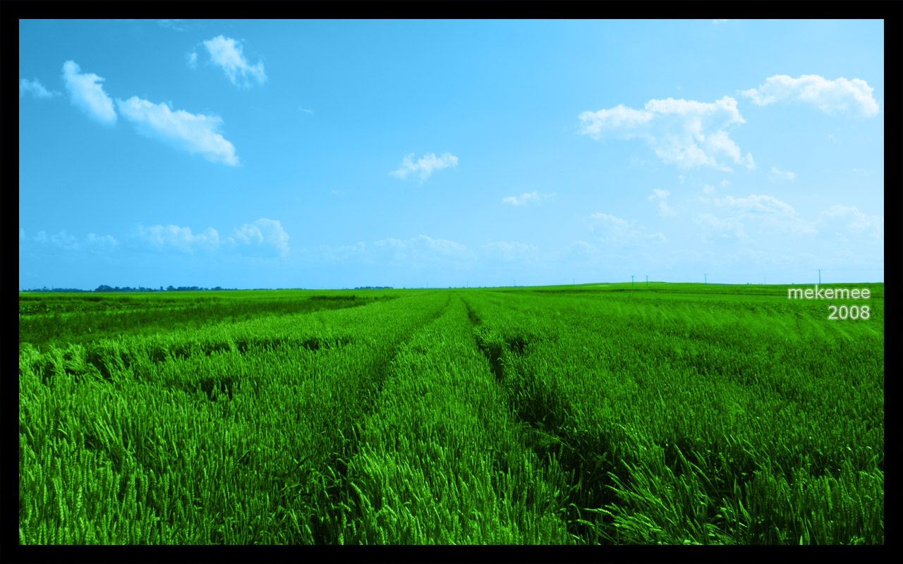 Green Fields Wallpaper