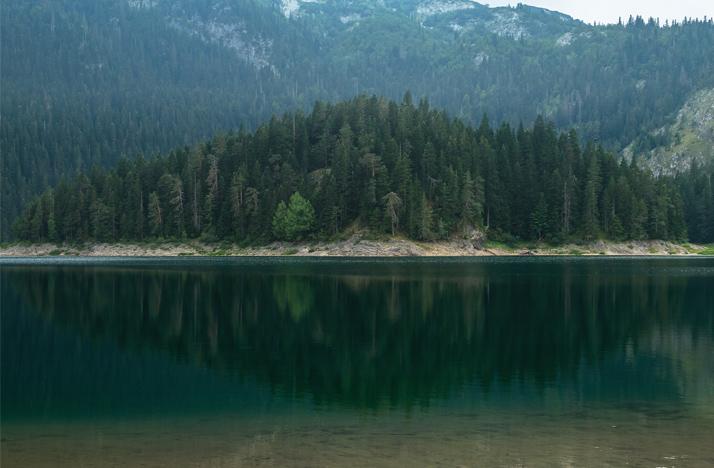 Черное озеро и лес, парк Дурмитор, Черногория