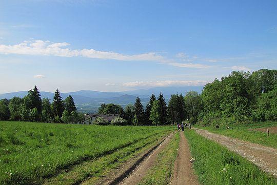 Widok z Przełęczy Komarnickiej w stronę Karkonoszy.