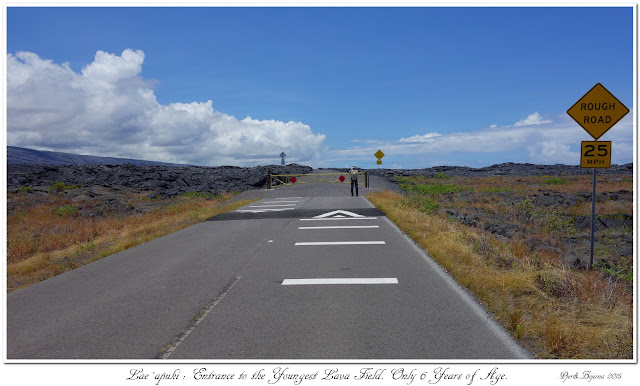 Lae Apuki: Entrance to the Youngest Lava Field. Only 6 Years of Age.