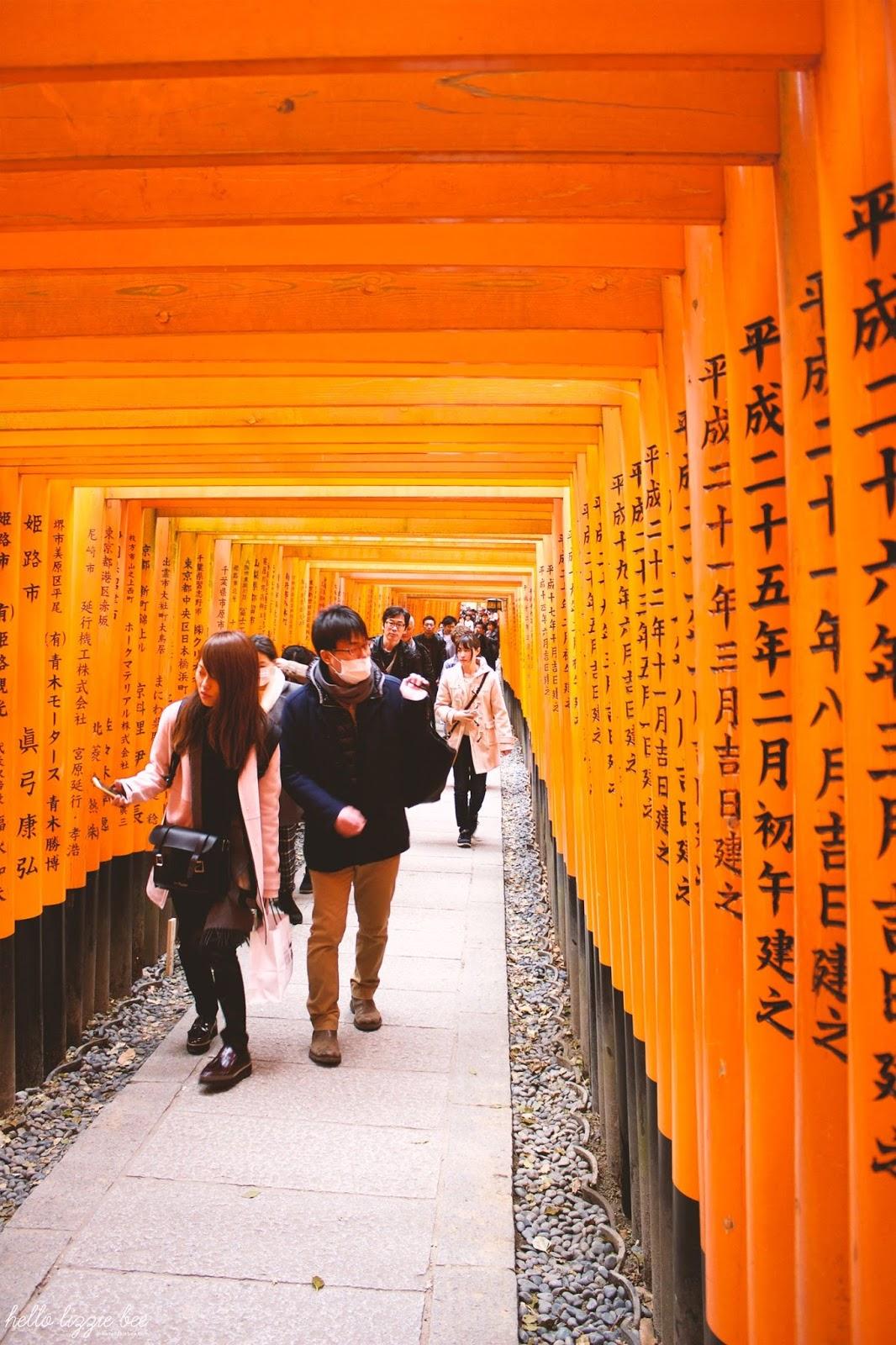 torii gates, fushimi inari-taisha