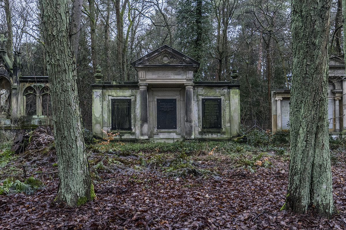 cemetery in the forest - photo #2