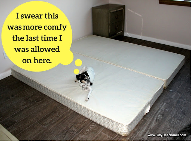funny caption for our amerisleep mattress reviews