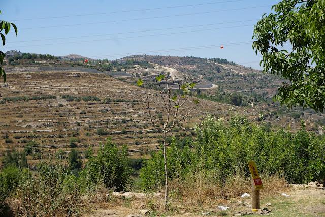 נוף הרי ירושלים