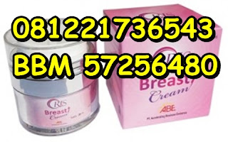 Agen Oris Breast cream di Pati