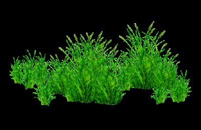 Picsart Grass PNG
