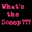 What's the Scoop??? And a Happy New Reading Year