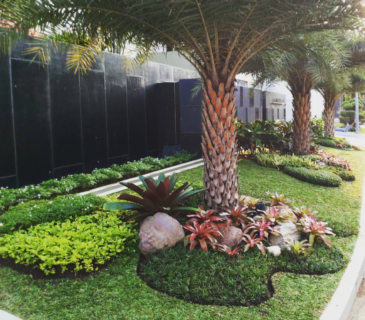 6 Tips Cara Prinsip Mendesain Taman Minimalis - TUKANG TAMAN SURABAYA