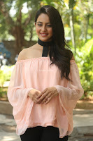 Rakul Preet Singh in lovely Pink Crop Top and Black Trousers at Jaya Janaki Nayaka success meet 054.JPG
