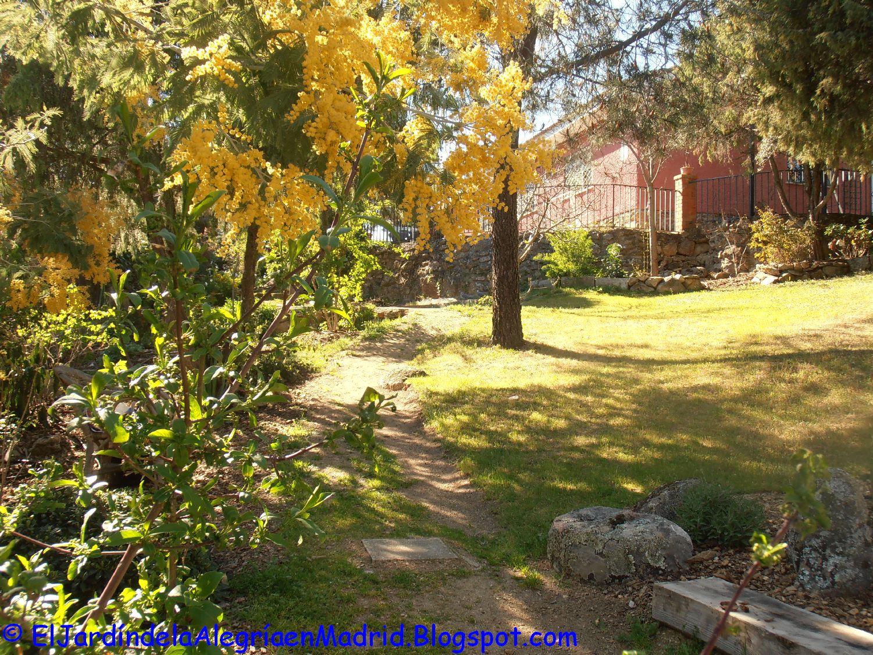 El jard n de la alegr a los bancales del huerto de nuevo for Cancion el jardin de la alegria